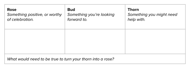 Rose Bud Thorn