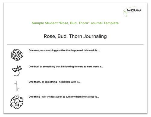 rose bud thorn journaling