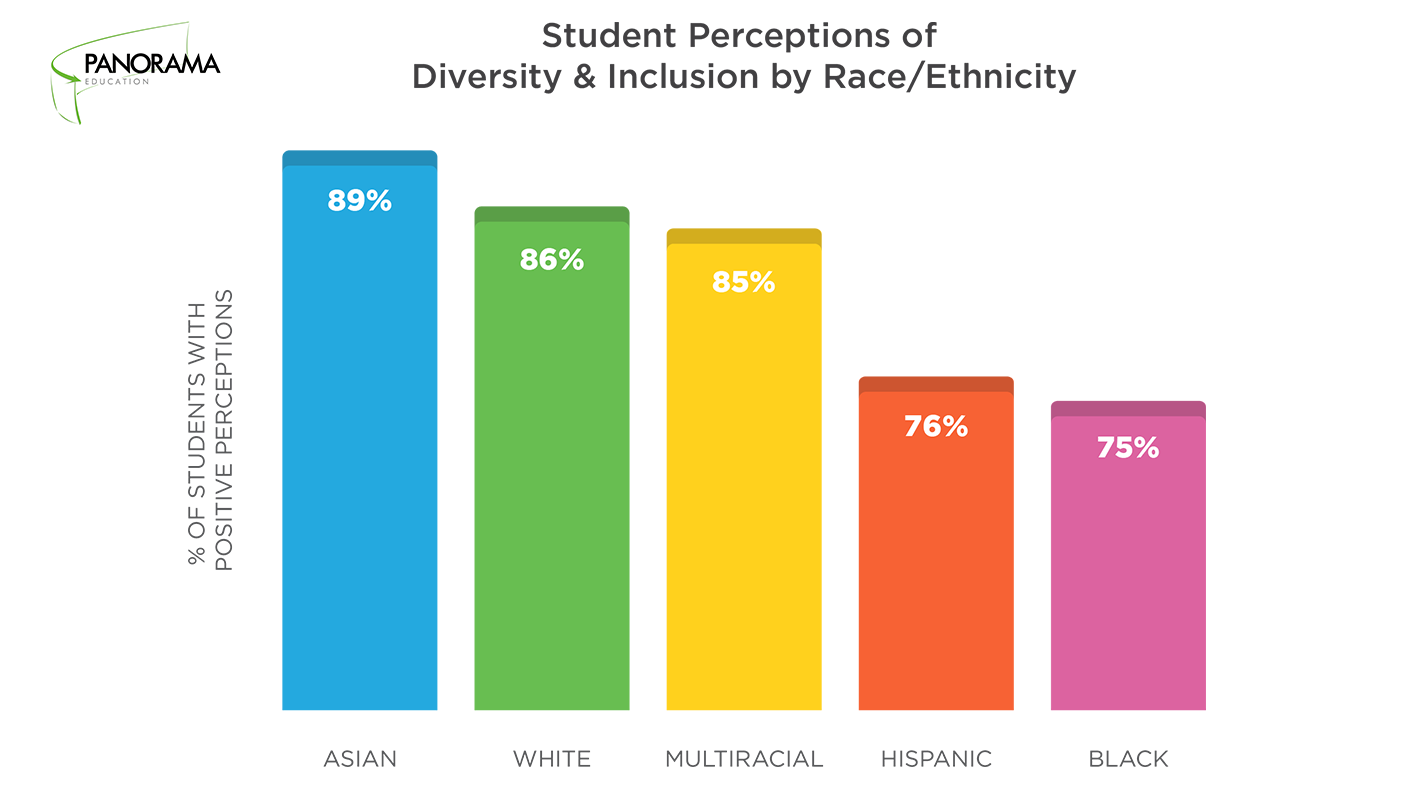 Student Perceptions Diversity and Inclusion by Race/Ethnicity