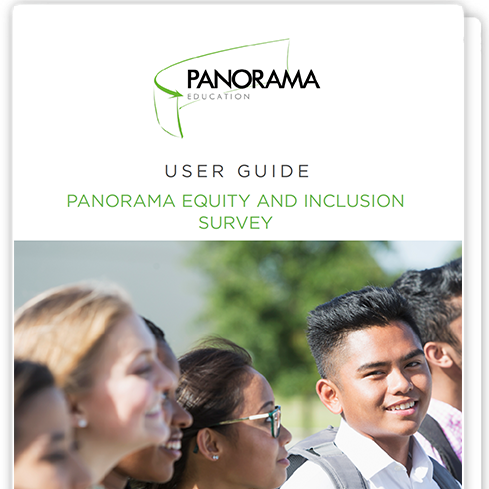Panorama Equity and Inclusion Survey