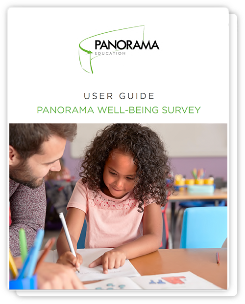 Panorama Well-Being Survey